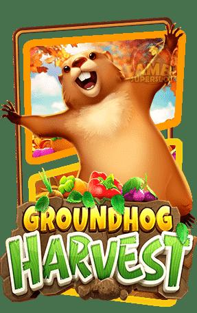 ปก-Groundhog-Harvest